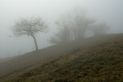Rural landscape in the mist on Vuache mountain