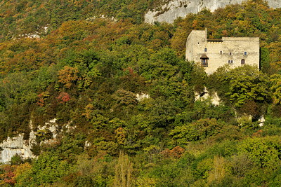 Photograph of Arcine castle surrounded by autumn forest