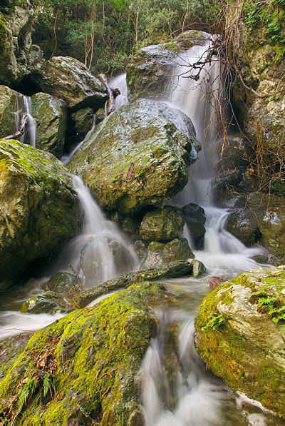 Wild water in Corsica mountains