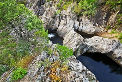 Dark water in the Verne river