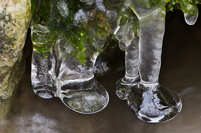 Ice stalactites in the Fornant river
