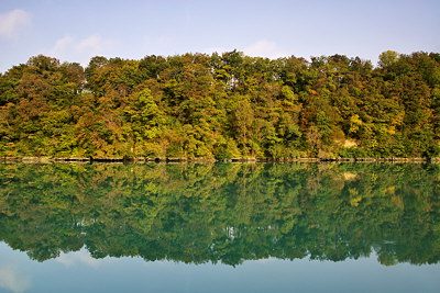 Photo of an autumn forest reflected in the Rhône river