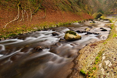 Image of Cheran river in autumn - Massif des Bauges Natural Park