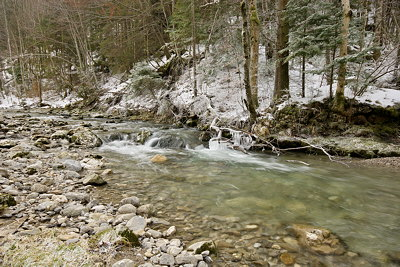 Photo of a cold winter stream in Massif des Bauges Natural Park - France