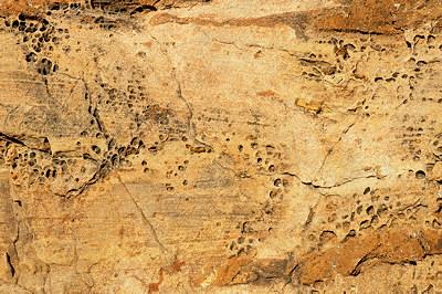 Detail of a mediterranean rock in the sun