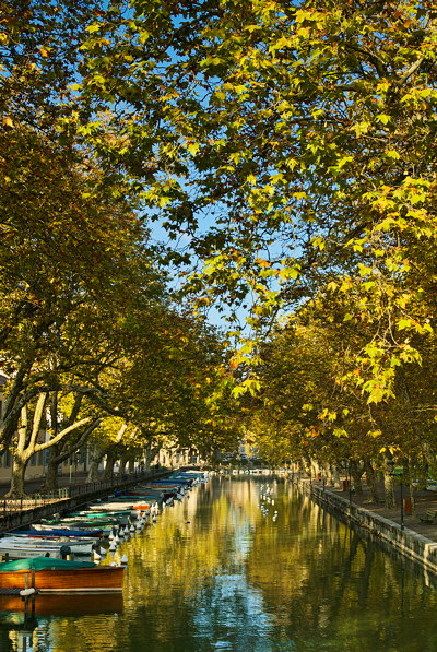 Annecy - Autumn leaves over the channel