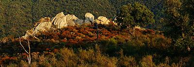 Massif des Maures landscape