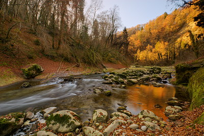 HDR photograph of an autumn morning along Cheran river in Massif des Bauges Natural Park